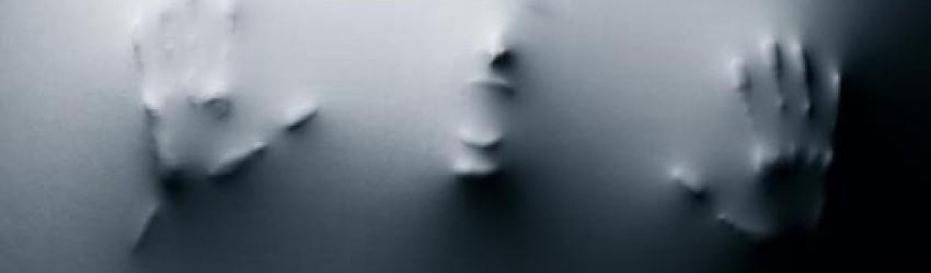 Le gris et l'opaque sont ce qu'on apprécie le plus aujourd'hui, et telles sont précisément les caractéristiques de la peur, également opaque et grise.