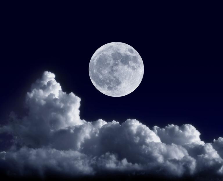 Dieu n'a donné aucune prérogatives particulière sur la place de l'homme : elle est au milieu de l'univers