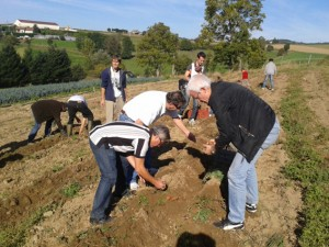e volontariat prend  la forme de chantiers participatifs où chacun peut venir aider généreusement