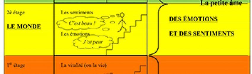 Schéma plan du corps humain
